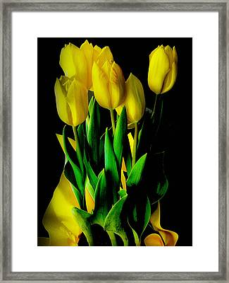 Framed Print featuring the photograph Tulips by Joseph Hollingsworth