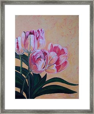 Tulips Framed Print by Krista Ouellette