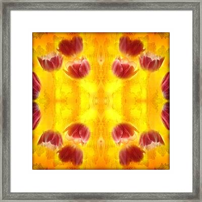 Tulips On Fire Framed Print by Don Powers