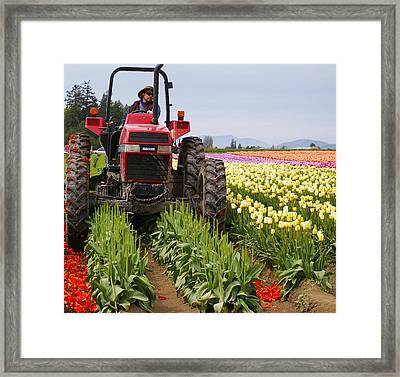 Tulips On My Tires Framed Print by Christine Burdine