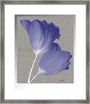 Framed Print featuring the digital art Tulips On Stone by Asok Mukhopadhyay