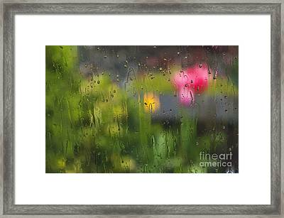 Tulips Through The Rain Framed Print by Maria Janicki