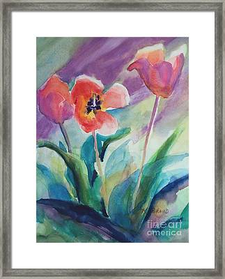Tulips With Lavender Framed Print
