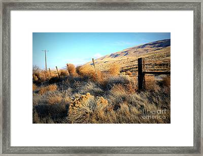 Tumbling Tumbleweeds Framed Print by Carol Groenen