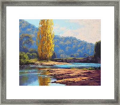 Tumut River Poplar Framed Print