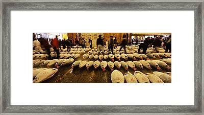 Tuna Auction At A Fish Market, Tsukiji Framed Print by Panoramic Images