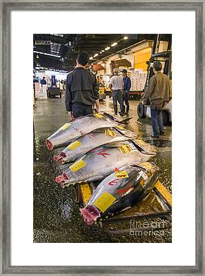 Tuna Cart Framed Print by Scott Kerrigan