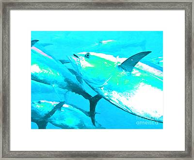 Tuna Fish P88 Framed Print by Wingsdomain Art and Photography