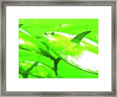 Tuna Fish Framed Print by Wingsdomain Art and Photography
