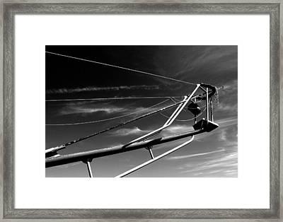 Tuna Stand Framed Print by Donnie Freeman