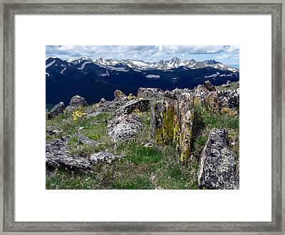 Tundra Views Framed Print