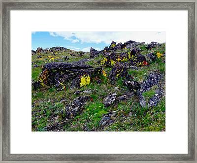 Tundra Yellows Framed Print