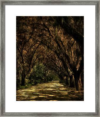 Tunnel   Framed Print
