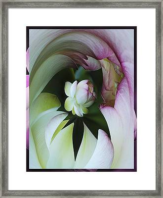 Tunnel Of Lotus Framed Print by Jean Noren