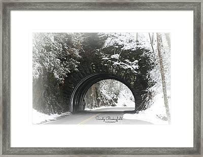 Tunnel Of Love Framed Print