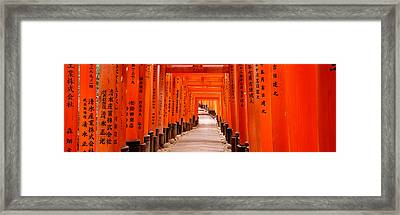 Tunnel Of Torii Gates, Fushimi Inari Framed Print by Panoramic Images
