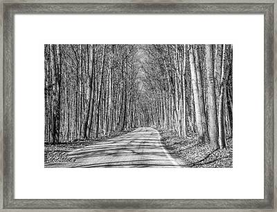 Tunnel Of Trees Black And White Framed Print
