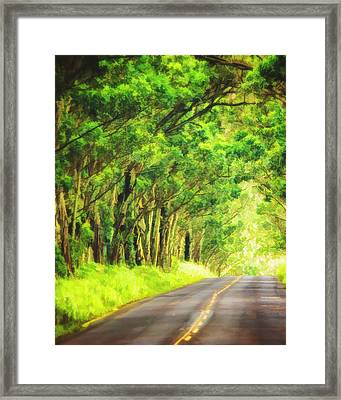 Tunnel Of Trees In Kauai Framed Print by Vicki Jauron