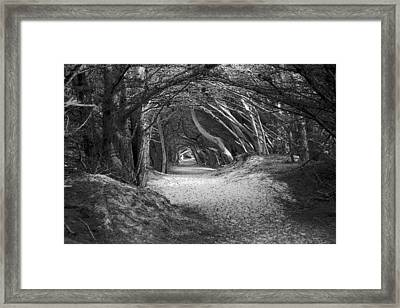 Tunnel To The Dunes In Black Framed Print