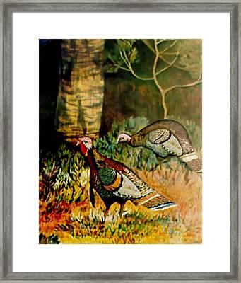 Turkey Framed Print