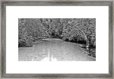 Turkey Creek Bw Framed Print by JC Findley