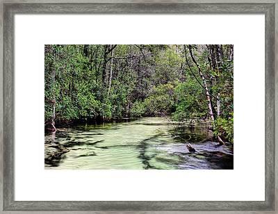 Turkey Creek Niceville Framed Print by JC Findley