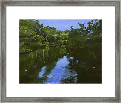 Turkey Creek Framed Print by Roger Wedegis