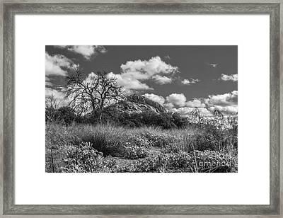 Turkey Hill Bw Framed Print