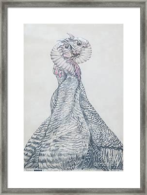 Turkey Necking Framed Print by Blanch Paulin