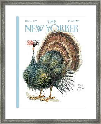 Turkey Wearing A False Pig Nose Framed Print