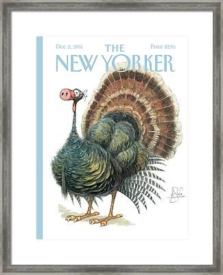 Turkey Wearing A False Pig Nose Framed Print by Peter de Sev
