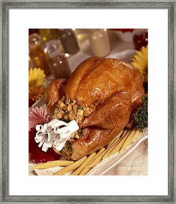 Turkey With Stuffing And Corn Framed Print by Iris Richardson
