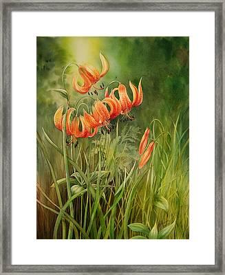 Turk's Cap Lilies Framed Print