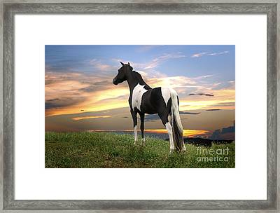 Turn The Paige Framed Print