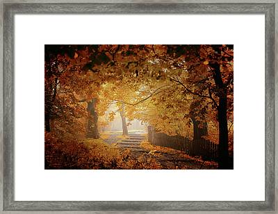Turn To Fall Framed Print