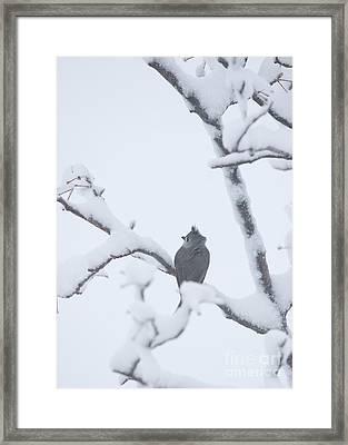 Turn Your Back To The Storm Framed Print by Kay Pickens