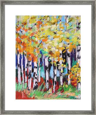 Turning Birches Framed Print by John Williams