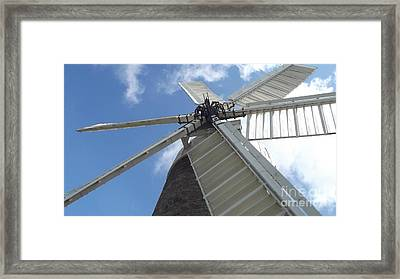 Turning In The Wind Framed Print