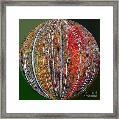 Turning Leaves Framed Print by Scott Cameron