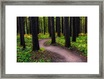 Turning Framed Print by Mary Amerman