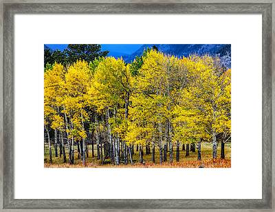 Turning Of The Aspens Framed Print