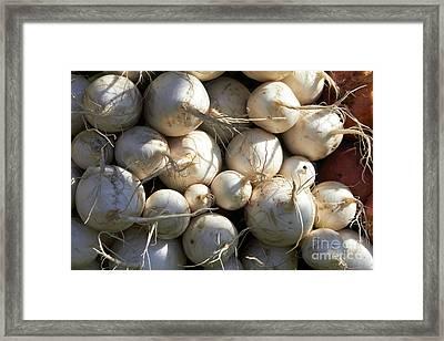 Turnips  Framed Print by Tony Cordoza