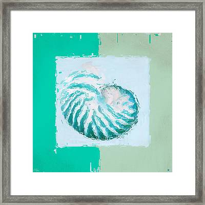 Turquoise Seashells Xii Framed Print by Lourry Legarde