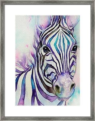 Turquoise Stripes Zebra Framed Print