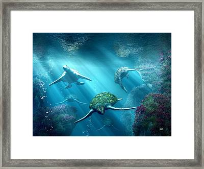 Turtle Alley Framed Print
