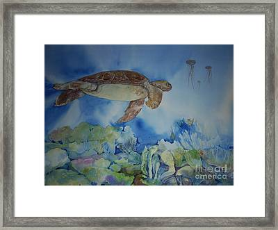 Turtle And Jelly Fish Framed Print by Donna Acheson-Juillet