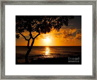 Framed Print featuring the photograph Turtle Bay Sunset by Kristine Merc
