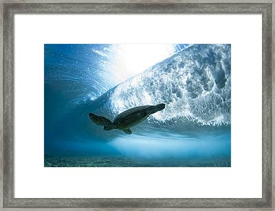 Turtle Clouds Framed Print by Sean Davey