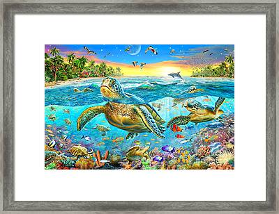 Turtle Cove Framed Print by Adrian Chesterman