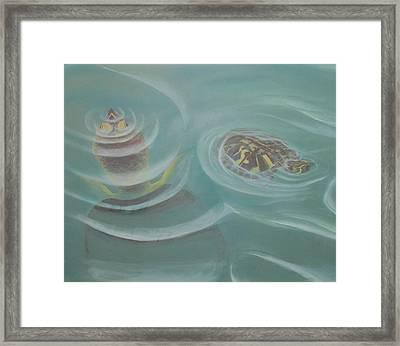 Turtle Pond I Framed Print